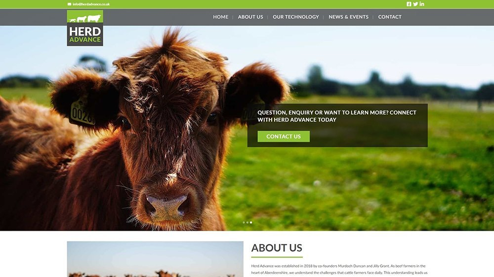 Herd Advance web design site in Dundee